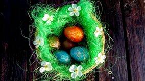 Jesteś ty przygotowywający dla Wielkanocnego w tym roku? Fotografia Royalty Free