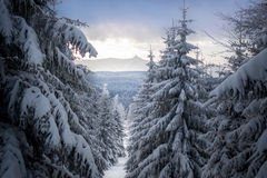 Jested mountain, Czech republic Stock Image