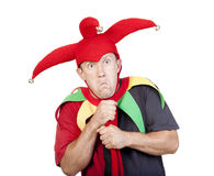 Jester Stock Photography