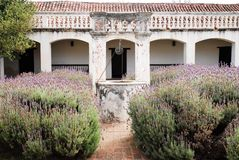 Jesuit Mission Lavender Garden. Lavender garden in the grounds of a Jesuit mission in Cordoba Argentina with a well in the centre Stock Photo