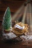 Jesus é nascido Imagem de Stock Royalty Free