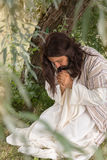 Jesus in agony praying in the garden of olives. Before his crucifixion Stock Photos