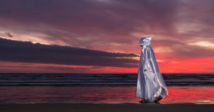 Jesus Beach Sunset. Jesus Christ in walking along a beach at sunset royalty free illustration