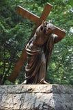 Jesus Carrying het Kruis bij het Nationale Heiligdom van onze Treurige Moeder de Grot in Portland, Oregon royalty-vrije stock fotografie