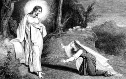 Jesus Christ appearing to Mary Magdalene. An engraved illustration image of  Jesus Christ appearing to Mary Magdalene, from a Victorian book dated 1836 that is Royalty Free Stock Images