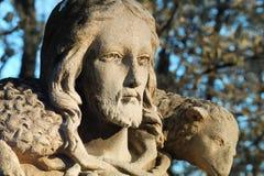 Jesus Christ - bom pastor Fotos de Stock Royalty Free