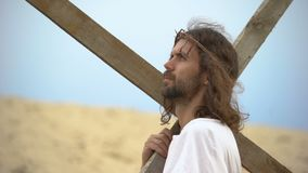 Jesus Christ with crown of thorns carrying cross, praying to God for sinners. Stock footage stock footage