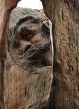 Jesus Christ Face Carved em Cedar Wood fotografia de stock royalty free