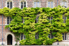 Jesus college Royalty Free Stock Images