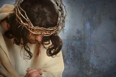 Jesus With Crown av taggar royaltyfri foto