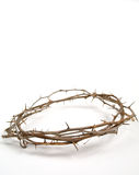 Jesus' crown of thorn. The crown of thorn putted on Jesus' head isolated on white Royalty Free Stock Image