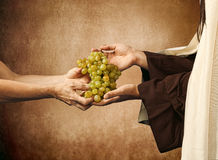 Jesus gives grapes to a beggar royalty free stock photography