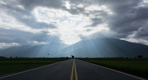 Jesus light. Country road,jesus light,and the flying bird Stock Photography
