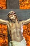Jesus op het kruis met doornen royalty-vrije stock afbeeldingen