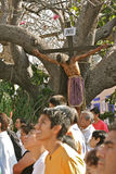 Jesus in the Tree. Good Friday Procession, Oaxaca. People during Good Friday ceremony. Oaxaca, Mexico Stock Photo