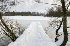 Jetée dans le lac figé Image libre de droits