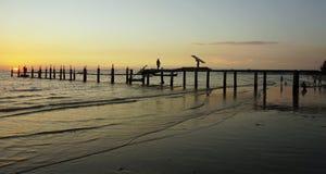 jetée en bois dans le coucher du soleil Image libre de droits