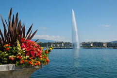 Jet d'Eau Fountain in Geneva. Switzerland from the lake Geneva corniche Stock Photos