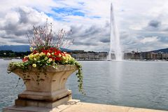 Jet d'Eau on Lake Geneva, Switzerland with flowers in the foregr Stock Photos