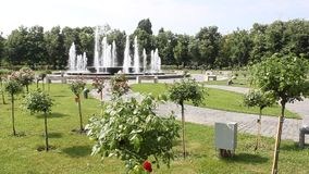 Jet fountain. Decorative in the park stock footage