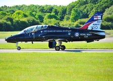 Jet reale del falco del blu marino Fotografia Stock