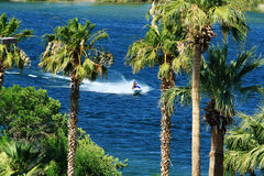 Jet Ski on River. Between palm trees Royalty Free Stock Photos
