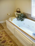 Jet tub in bathroom. With tile floor and plant Stock Photography