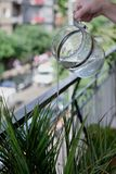 A jet of water from a jug to water ornamental plants stock images