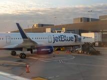 JetBlue Airbus A320 que senta-se no reabastecimento do alcatrão da pista de decolagem de JFK Imagens de Stock