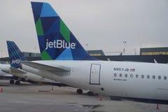 JetBlue-Fläche auf Asphalt bei John F Kennedy International Airport in New York lizenzfreie stockbilder