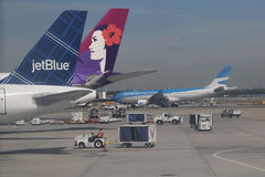 JetBlue, Hawaiian Airlines and Aerolineas Argentinas jets on tarmac at John F Kennedy International Airport Royalty Free Stock Photo