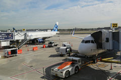JetBlue plane on tarmac at John F Kennedy International Airport in New York Stock Photo