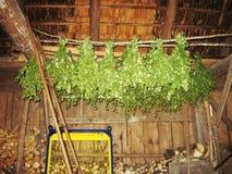 Jetez pour le bois de chauffage avec les brindilles prêtes à l'emploi de bouleau pour le bain de vapeur photographie stock