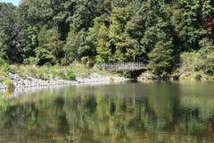 Jetez un pont sur à l'intérieur de la forêt qui est reflétée dans le lac Photos stock
