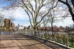 Jetez un pont sur dans le Central Park NYC Photographie stock libre de droits