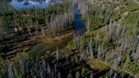 Jetez un pont sur les croix une vapeur qui mène à partir d'un grand lac dans la région sauvage de l'Idaho banque de vidéos