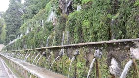 TIVOLI, ITALY - AUGUST 2018: Jets of water flow from the fountain at Villa D`este in Tivoli, part of the UNESCO heritage. Jets of water flow from the fountain at stock video