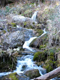 The Jets of the World River in Sierra de Alcaraz, Albacete. Andalusia. Spain Stock Photography