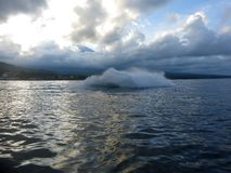 Jetski p? havet Hastighet och adrenalin royaltyfria bilder