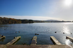 Jetties at Talkin Tarn, on an Autumn day. Royalty Free Stock Photo