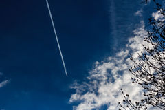 Jetting through blue skies. Dark blue sky, clouds and tree limbs in lower left third, jet stream upper left third Royalty Free Stock Photography