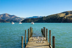 Jetty in Akaroa. South island of New Zealand Royalty Free Stock Images