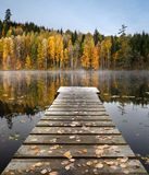 Jetty. Autumn at a small lake with a jetty Royalty Free Stock Images