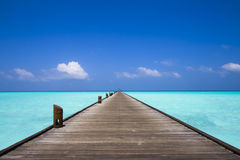 Jetty at the beach Royalty Free Stock Images