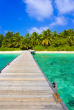 Jetty, beach and jungle Stock Images