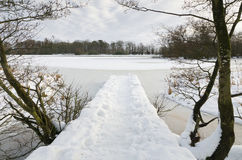 Jetty into frozen lake. Jetty covered in snow at Bolam Lake Country Park Royalty Free Stock Image
