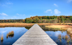 Jetty on lake in countryside Royalty Free Stock Photo