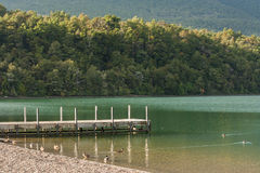 Jetty on lake Rotoiti, Nelson Lakes National Park Royalty Free Stock Photography