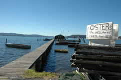 Jetty leading to an oyster farm Royalty Free Stock Images
