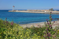 Jetty lighthouse beach flower Mediterranean France Stock Photos